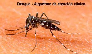 dengueeee