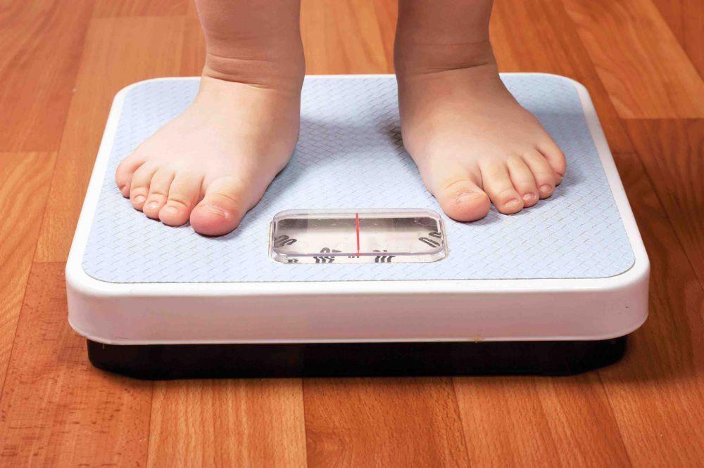 obesidad