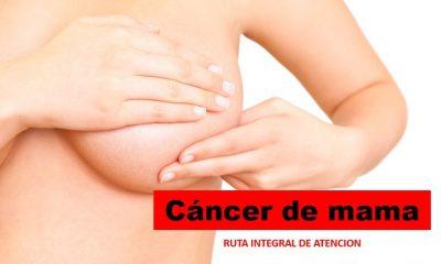 ria cancer de mama