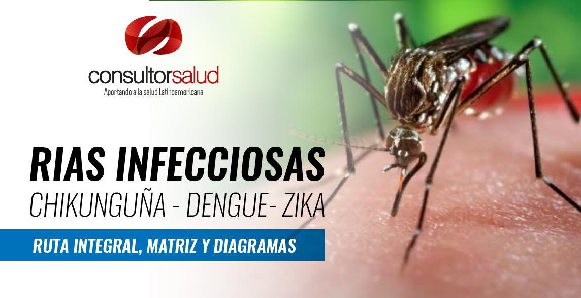 dengue 0