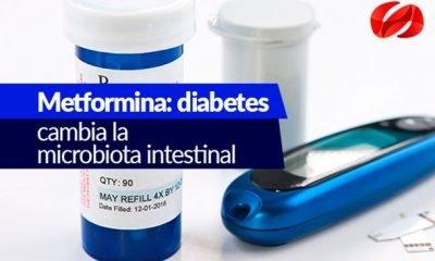 metformina diabetes 0