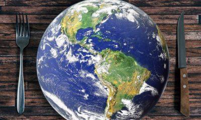 Impacto social y económico de la malnutrición en América Latina 1