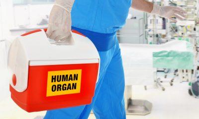 "Corte tumbó prohibición de donar órganos de ""niños no nacidos abortados"""