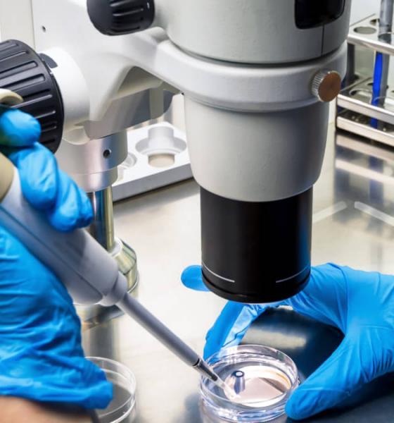 Reino Unido investiga células que podría combatir todo tipo cáncer