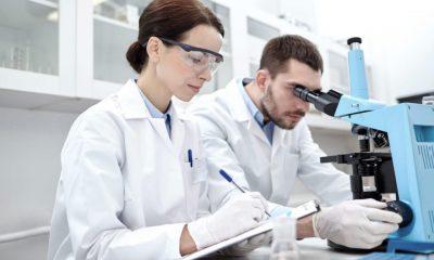 Primeros estudios preclinicos de cannabis medicinal en Latinoamerica