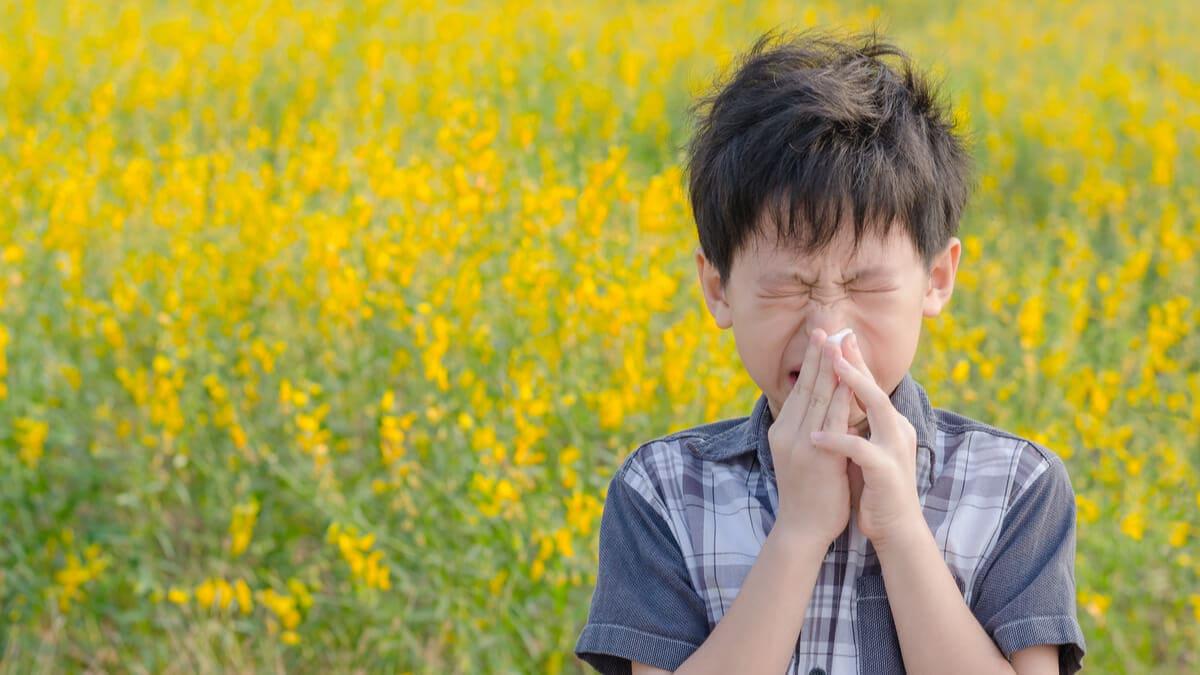 Vacunas para la alergia al polen