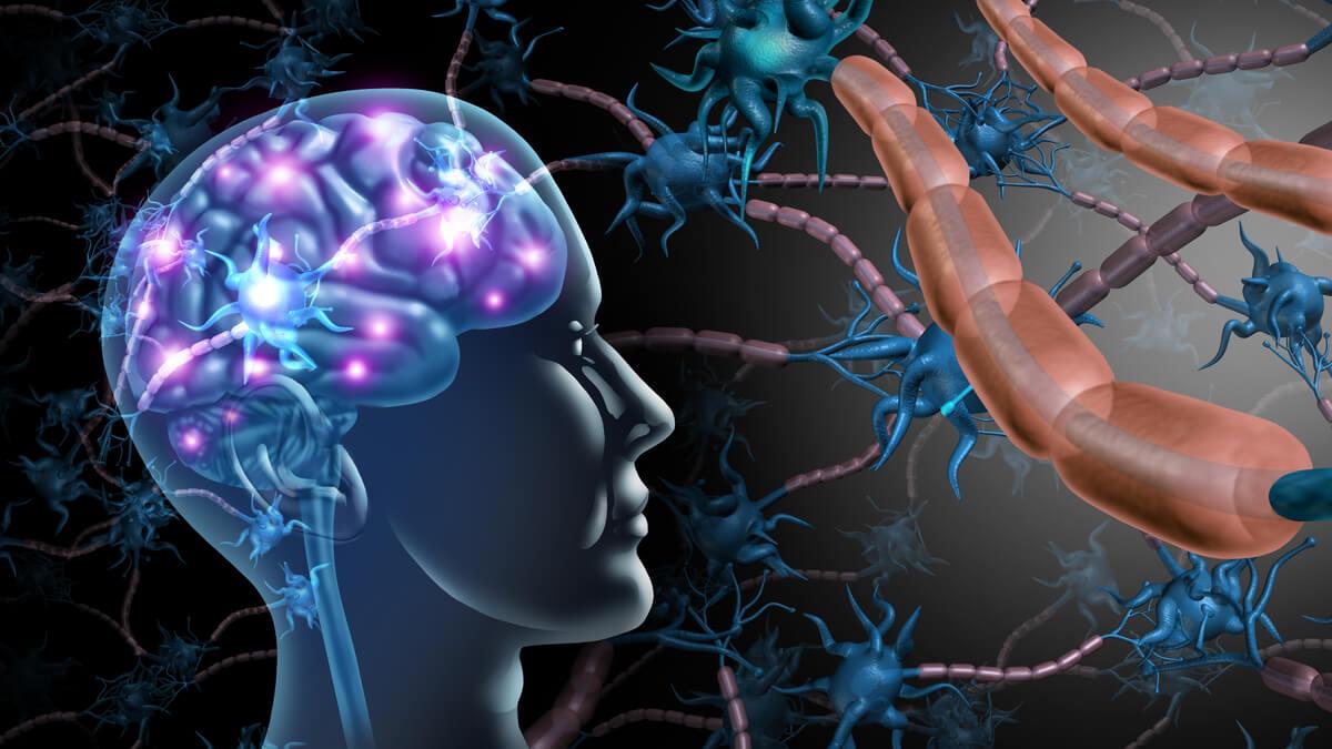 ELA podría diagnosticarse rápidamente por muestras de sangre