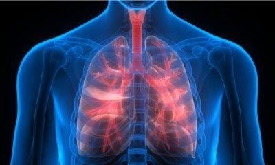 Científicos logran revivir pulmones dañados para trasplante