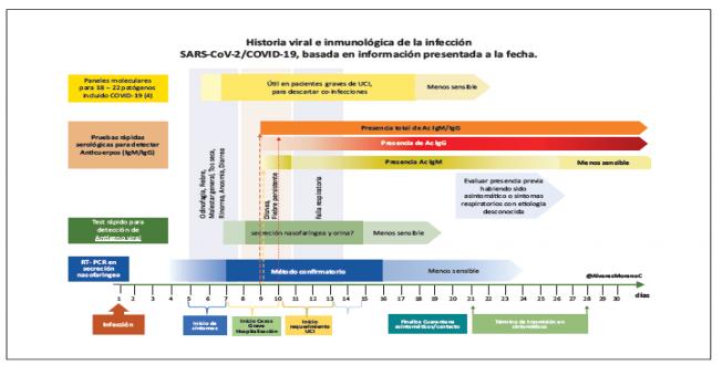 Historia Viral e inmunológica de la infección