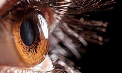 Investigan tratamiento potencial para la recuperación de pacientes con afecciones en la córnea