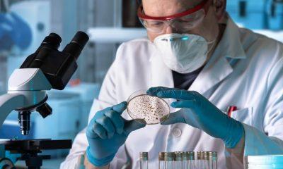 Nuevo hallazgo ayudaría a combatir infecciones resistentes a antibióticos