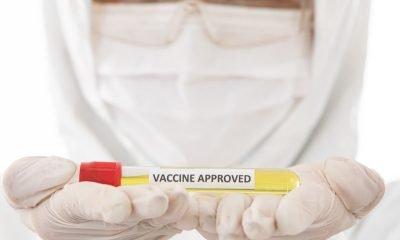 Vacuna PfizerBioNTech pedirá aprobación para octubre