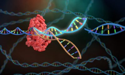 Nuevo sistema CRISPR ayudaría en búsqueda de antibióticos