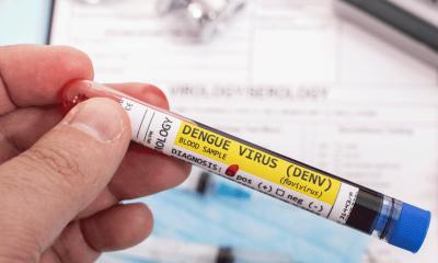 dengue-en-colombia