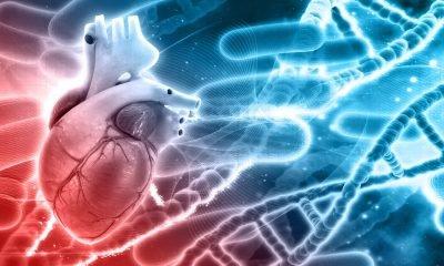 Descubren nueva enfermedad genética que afecta el corazón y el sistema nervioso