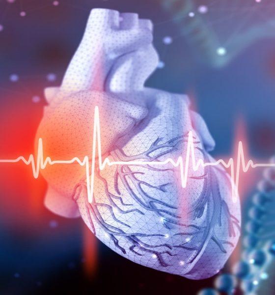 Tratamiento ayudaría a revertir daños estructurales en el corazón