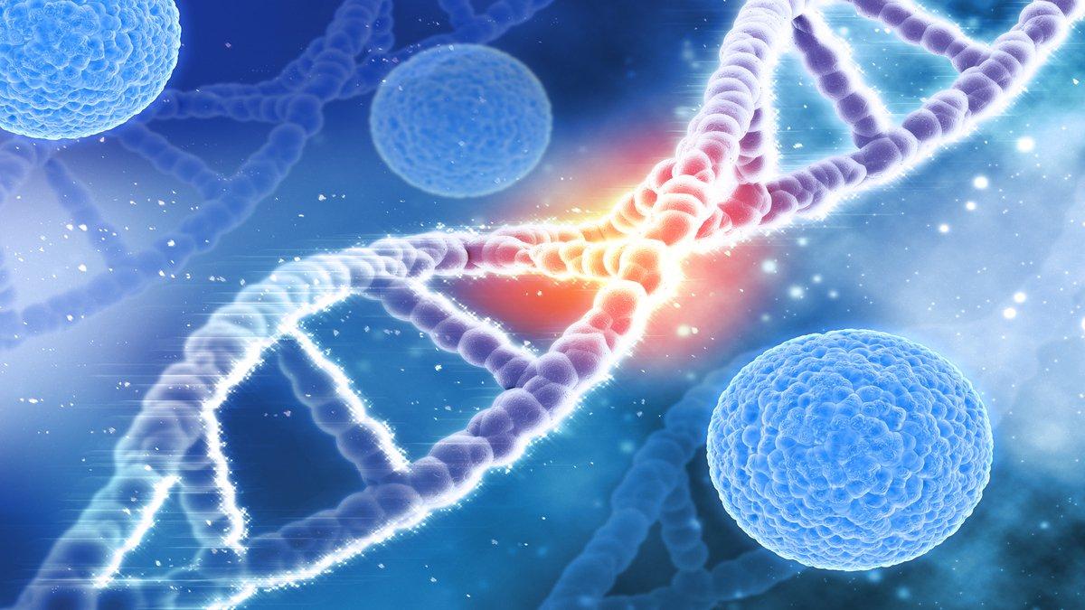 Virus del herpes afectaría el desarrollo cerebral del feto