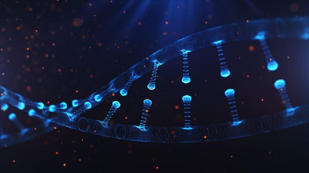 Científicos lograron revertir el proceso de envejecimiento celular parcialmente