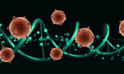 Tratamientos con terapia génica funcionan para cada vez más enfermedades