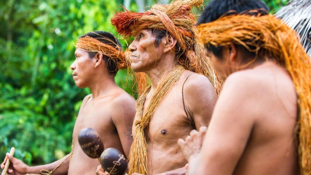Plan decenal 2021 comunidades indígenas