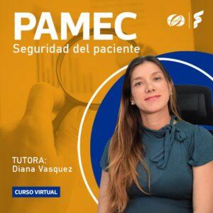 banner-cursos-PAMEC-800x800-5a
