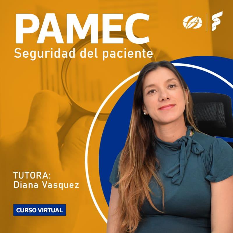 Curso Virtual: PAMEC seguridad del paciente