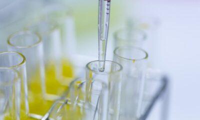 ensayos clínicos para vacunas covid19