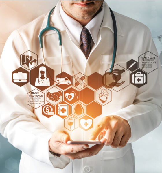 que paso implementacion plan decenal de salud publica