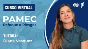 Curso virtual PAMEC enfoque a riesgos - consultorsalud formarsalud-1