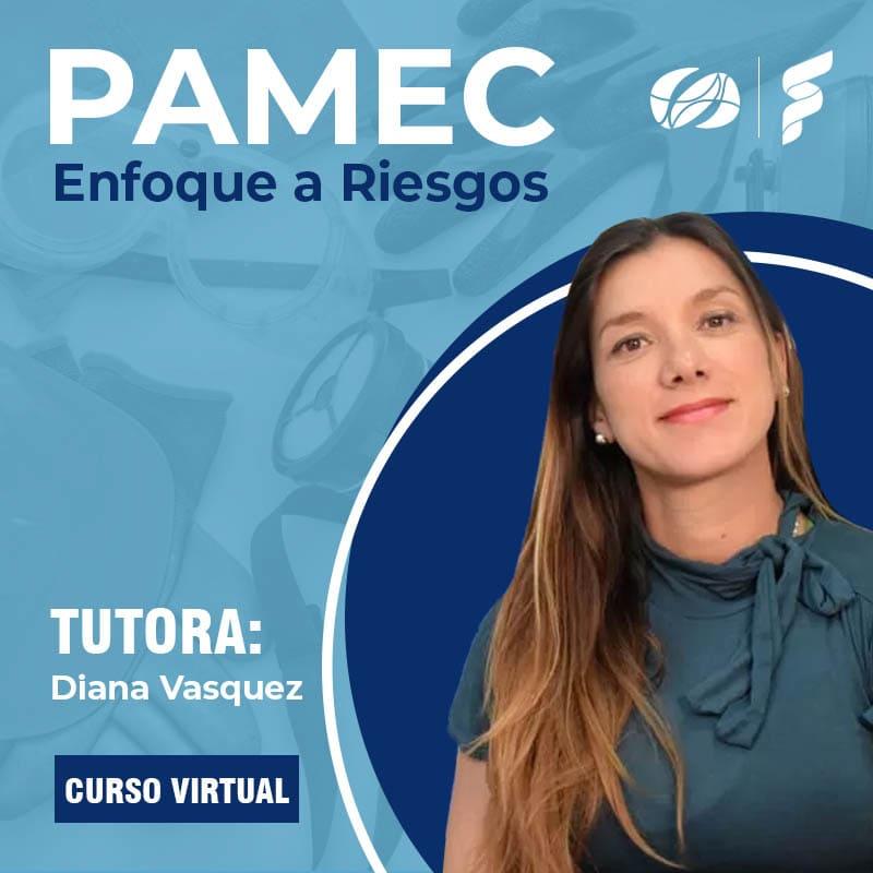 Curso Virtual: PAMEC Enfoque a Riesgos
