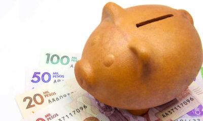 El Gobierno estableció el Plan de Austeridad del Gasto 2021 ¿Qué es