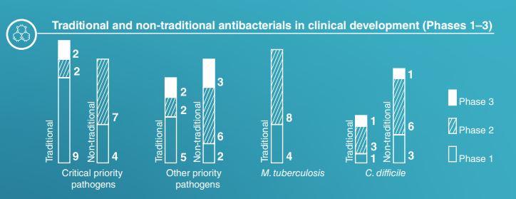 fases de desarrollo de antibioticos