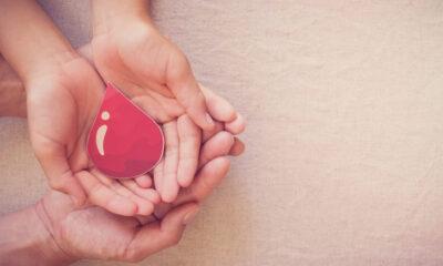 que celebro por el dia mundial de la hemofilia