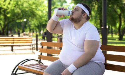 vinculan circuitos cerebrales obesidad