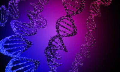primer ensayo in vivo CRISPR