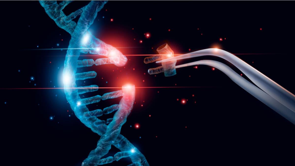 Informe OMS importancia de la edición del genoma humano para la salud pública
