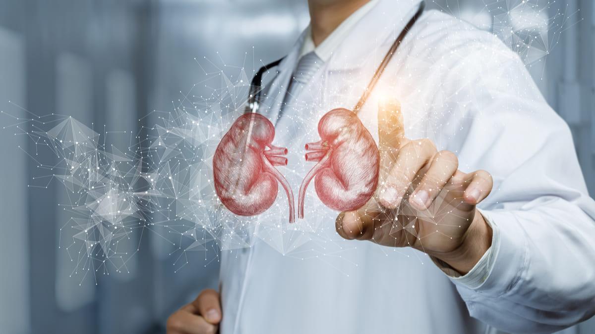 guias adopcion enfermedad renal diabetica