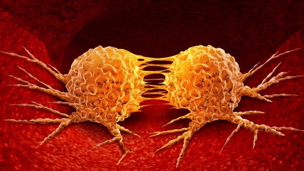 hallazgo reposicionaria inmunoterapia cancer
