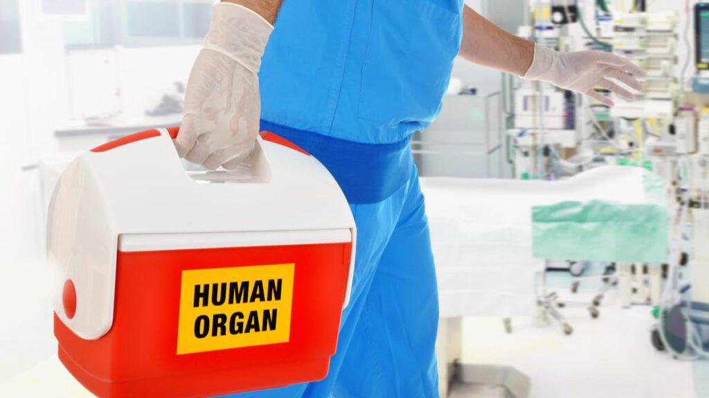 crean dispositivo predice rechazo organos trasplantados