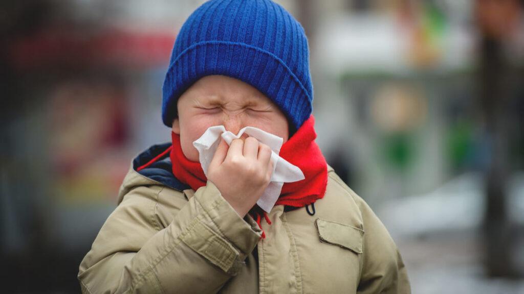 expertos identifican 4 tipos de rinitis alergica niños